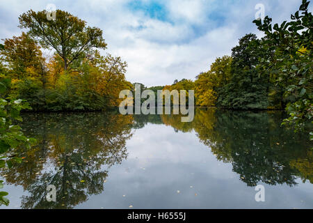 View of lake and trees in Autumn in Tiergarten park in Berlin Germany - Stock Photo