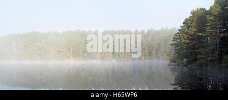 Loch Garten covered in early morning mist, Abernethy Forest, remnant of the Caledonian Forest in Strathspey, Scotland - Stock Photo