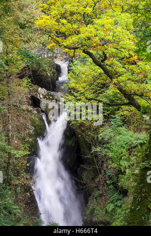 Aira Force waterfall with autumn colours, near Ullswater, Lake District, Cumbria UK - Stock Photo
