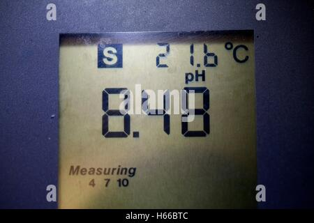 pH meter LCD panel showing a pH of 8.48. - Stock Photo