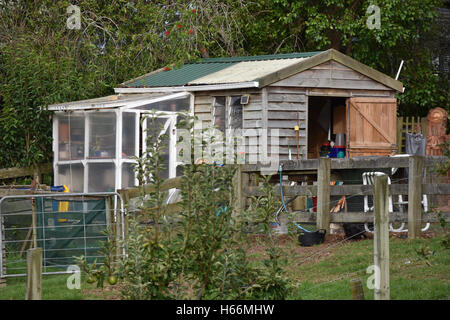 wooden garden shed with small greenhouse attached stock photo