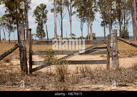 Old wooden farm gate and timber posts with field of dry grasses and eucalyptus trees beyond barrier under blue sky - Stock Photo