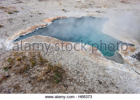 Steam rises from Blue Star Spring, a hot spring of near-boiling water in Yellowstone National Park, Wyoming. Blue - Stock Photo