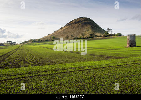 North Berwick Law, East Lothian, Scotland UK. - Stock Photo