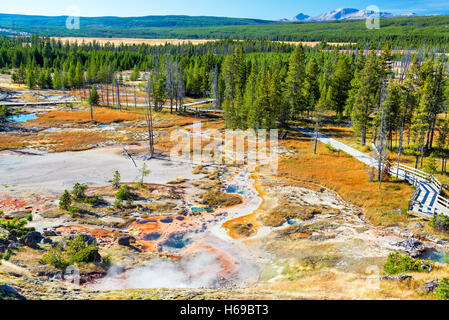 Landscape view of Norris Geyser Basin in Yellowstone National Park
