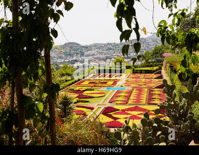 A view from the Madeira botanical garden towards Funchal in the background on the Portuguese island of Madeira - Stock Photo
