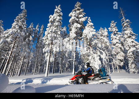 Man driving snowmobile in snowy forest in a sunny day. Lapland, Finland. - Stock Photo