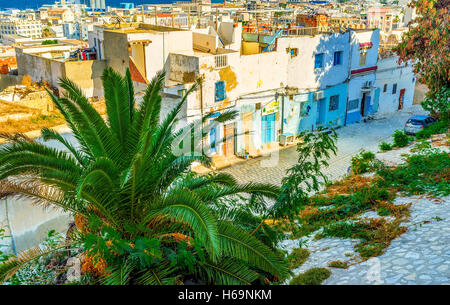 The great view on residential districts of old Medina from the top of Kasbah - Stock Photo