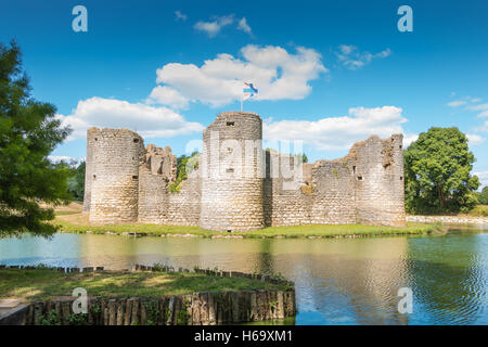 Commequiers, France - August 09, 2016 : ruins of the medieval castle of Commequiers, France on days door-open in - Stock Photo