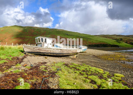 Sun shines on the peeling paint of two old abandoned wooden boat wrecks on the shore of Loch Harport on Isle of - Stock Photo