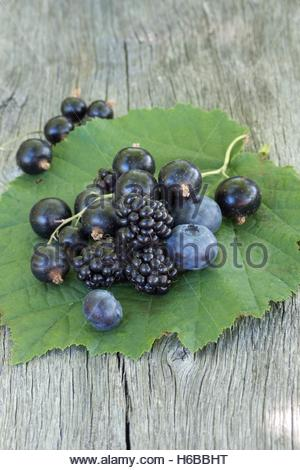 Black fruits, blackcurrants, blackberries, blueberries - Stock Photo