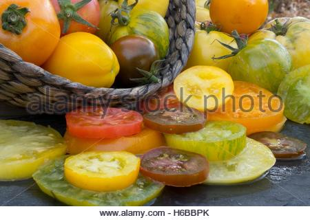 Old varieties of tomatoes - Stock Photo