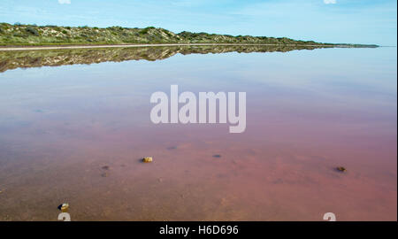 The Hutt Lagoon, salt lake, with distinct pink hue in the Mouth of Hutt River in the mid west of Western Australia. - Stock Photo