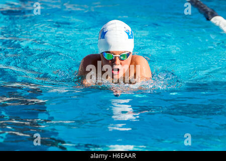 Young Boy Swimming At An Open Air Bath Stock Photo Royalty Free Image 14619864 Alamy