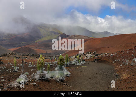 Morning images of the fog burning off in the colorful Haleakala crater in Haleakala National Park, Maui, Hawaii - Stock Photo
