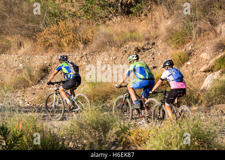 Two Persons Men Biking Way Mountains Alps Bicycle Biking ...
