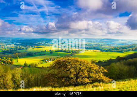 The view of Sussex Weald from Chanctonbury ring South Downs West Sussex, England - Stock Photo