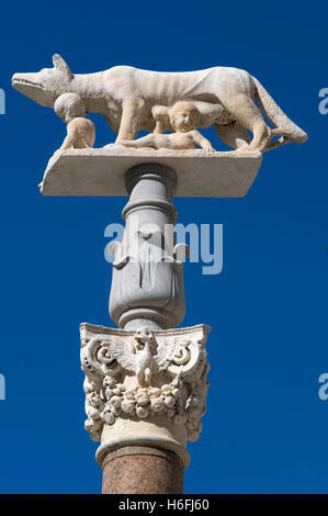 Roman she-wolf in front of the cathedral, Siena, Unesco World Heritage Site, Tuscany, Italy, Europe - Stock Photo