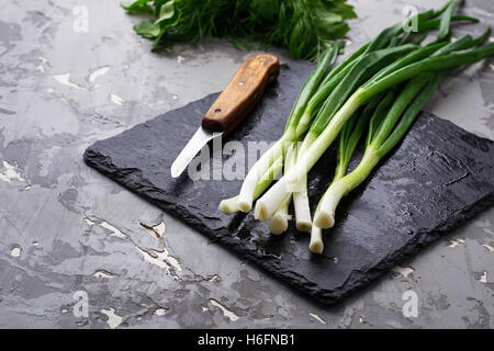 Fresh green onion on slate board. Selective focus - Stock Photo