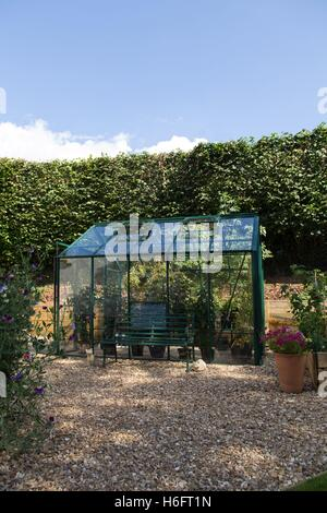 A green metal greenhouse, vented roof windows, sliding doors and garden seat,  growing tomatoes and chrysanthemums - Stock Photo
