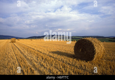 Germany, Lower Saxony, stubble field at the river Weser near the city of Hameln. - Stock Photo