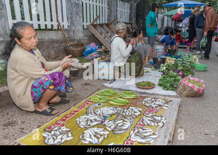 Local market early morning Luang Prabang Laos woman selling fish - Stock Photo