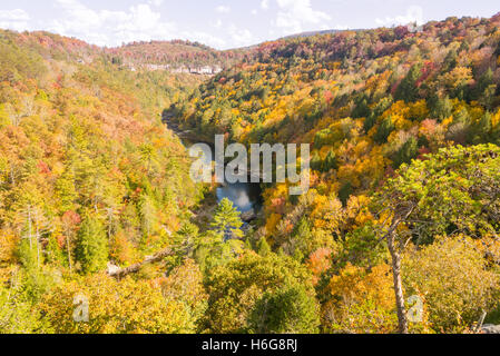The view from the Lilly Bluff overlook at a river valley, Obed Wild and Scenic River - Stock Photo