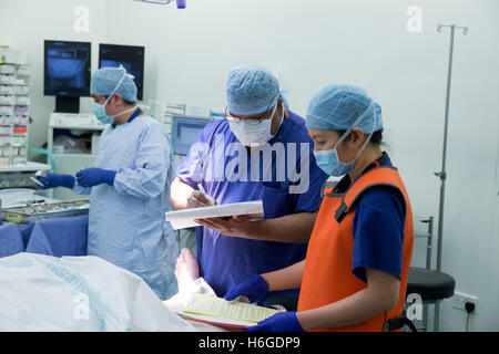 Medical staff in a hospital operating theatre during an operation checking the patients' records - Stock Photo