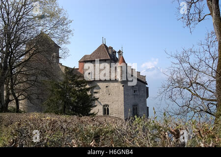 Vaud, Switzerland - April 13, 2010: View of Chillon Castle on Lake Geneva in Switzerland in spring. - Stock Photo