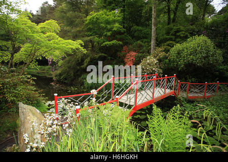 Colourful Japanese Bridge in the gardens at Portmeirion village Gwynedd North Wales UK - Stock Photo