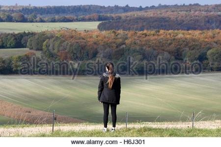 Halnaker, West Sussex, UK. 29th October 2016  Pictured is the view from Halnaker Windmill near Chichester in West - Stock Photo