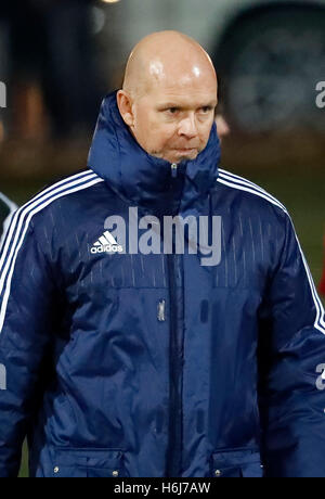 Budapest, Hungary. 29th October, 2016. Head coach Henning Berg of Videoton FC waits for the second half during the - Stock Photo