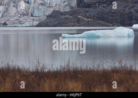 Icebergs are seen in Mendenhall Lake with continuing retreat of Mendenhall Glacier in Juneau, Alaska. - Stock Photo