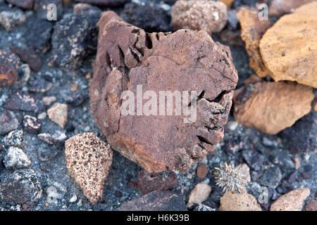 Specimen of the Burnt Mountain near Twyfelfontein Damaraland Namibia - Stock Photo