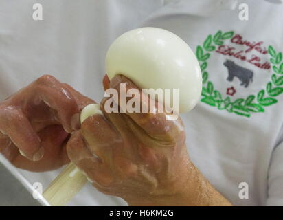 Moscow Region, Russia. 29th Oct, 2016. Making Scamorza at the DolceLatte cheese factory. © Stanislav Krasilnikov/TASS/Alamy - Stock Photo
