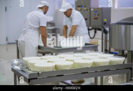 Moscow Region, Russia. 29th Oct, 2016. Making Ricotta at the DolceLatte cheese factory. © Stanislav Krasilnikov/TASS/Alamy - Stock Photo