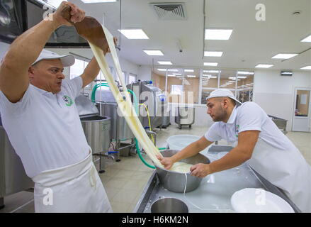 Moscow Region, Russia. 29th Oct, 2016. Stretching soft Italian cheese at the DolceLatte cheese factory. © Stanislav - Stock Photo