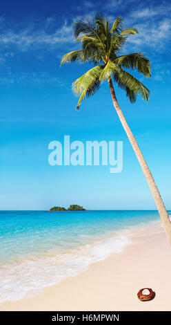 Tropical beach with palm tree and azure water - Stock Photo