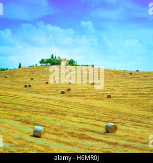 Tuscany, farmland country landscape, on hill top, hay rolls and harvested green fields. Val d Orcia, Italy, Europe. - Stock Photo