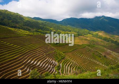 landscapes - Stock Photo
