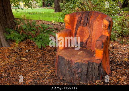 Wooden bench carved from Western Red Cedar tree in Beacon Hill Park-Victoria, British Columbia, Canada. - Stock Photo