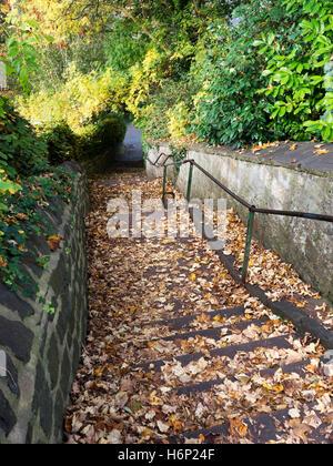 Steps down to Waterside near Bebra Gardens in Autumn Knaresborough North Yorkshire England - Stock Photo