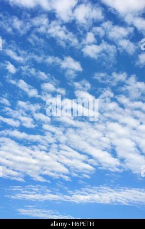 cloud clouds only firmament sky backdrop background blue arrangement beautiful beauteously nice big large enormous - Stock Photo