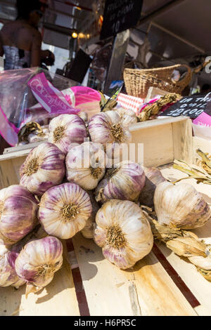 French pink garlic on sale in a market in Port Grimaud, Var, France. - Stock Photo