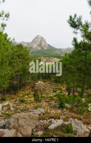 Corsican nature and Mountain View. Along the Cascade de Piscia di Ghjaddu trail. Corse-du-Sud, Corsica, France - Stock Photo