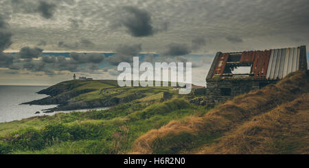 A typical Irish landscape with clouds, a light house, an old abandoned stone house with tin roof, greenery and grazing animals.