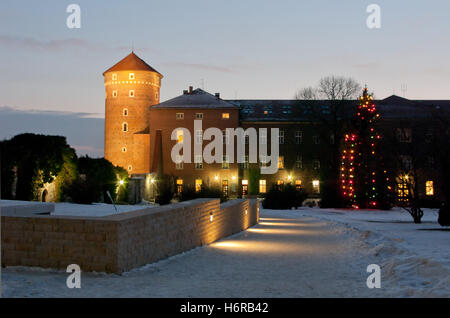 wawel at night in winter. - Stock Photo