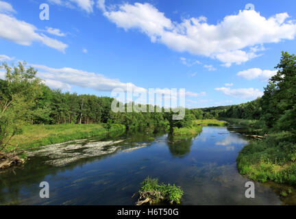 the renatured ruhr in mid-june - Stock Photo