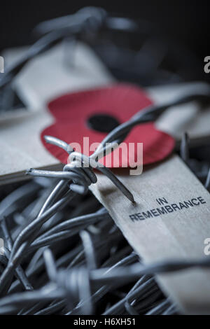 Poppy Appeal cross of remembrance and barbed wire. - Stock Photo