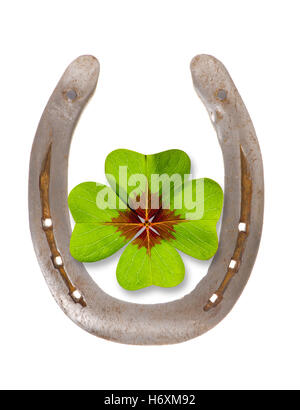 horseshoes and clover for luck - Stock Photo